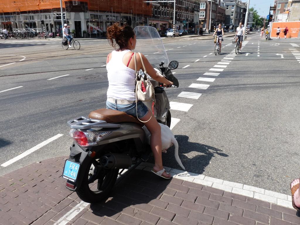 P1160382 - amsterdam