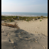 Strand - Nature calls
