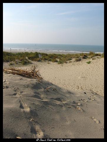 Strand Nature calls