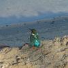 P1050239 - Rode Zee