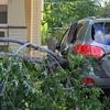 hurricane earl 022 - Picture Box