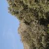 IMGP1881 - Spain 2008