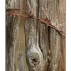 Fence post - Close-Up Photography