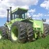 CIMG7401 - Lipiec 2010