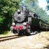 T02559 Tkp23 Lieren - 20100905 Terug naar Toen