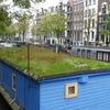 P1180353 - amsterdam