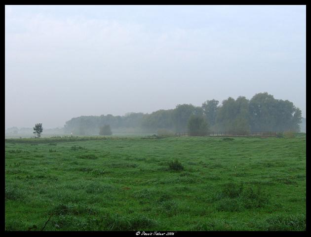 Mist Nature calls