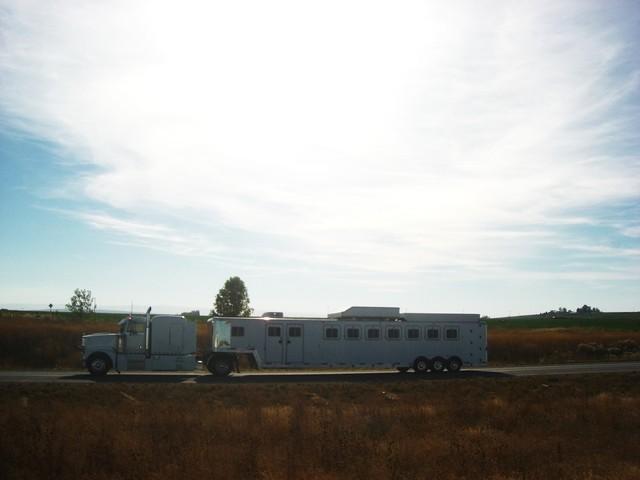 CIMG8459 nov 2010