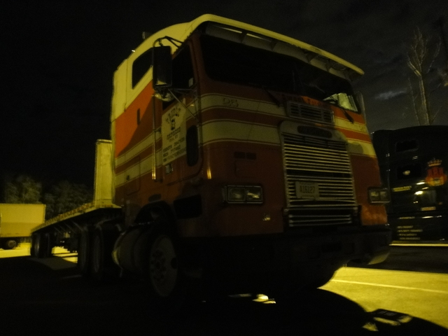 DSC01716 nov 2010