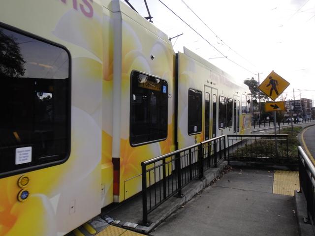 DSC02373 nov 2010