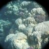 P1040418 - seascapes