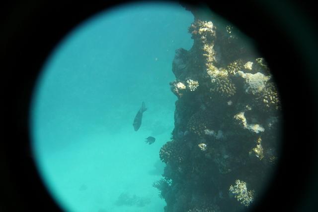 P1040435 seascapes