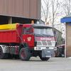 12-12-2010 004-border - Augustus 2008