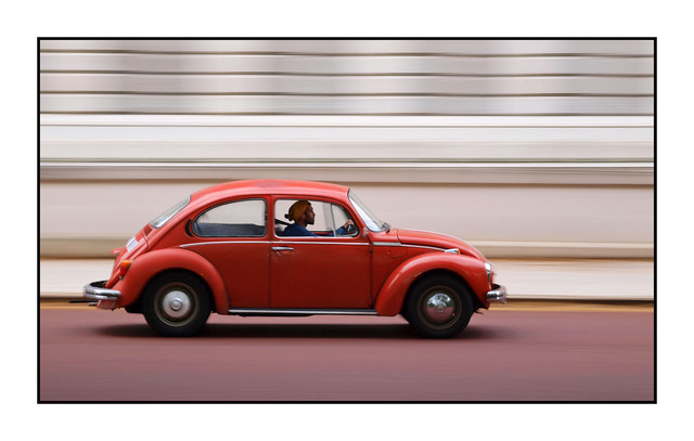 London Speedy Bug England and Wales