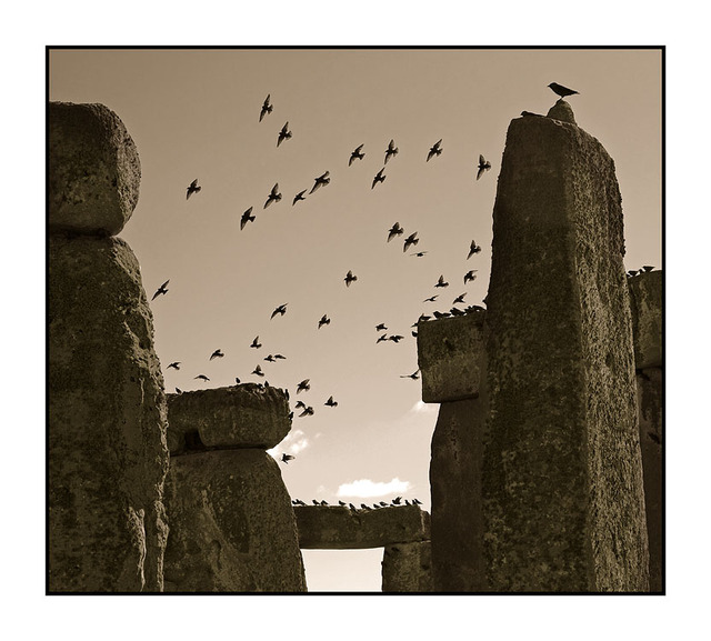 Stone Henge Birds Sepia England and Wales
