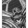Salisbury Cathedral Screamer - England and Wales