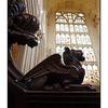 Bath Abbey Giffon - England and Wales