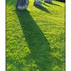 Kenmare Stone Shadows - Ireland
