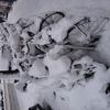 P1200654 - sneeuw