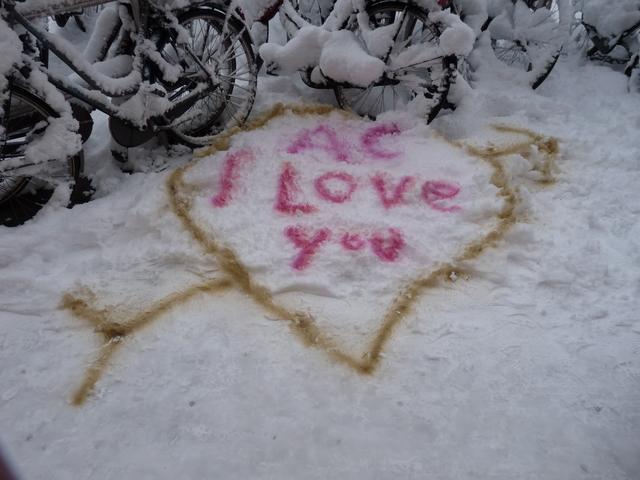 P1200655 sneeuw