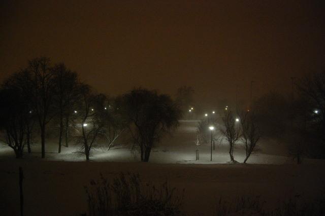 DSC 2438 Winter