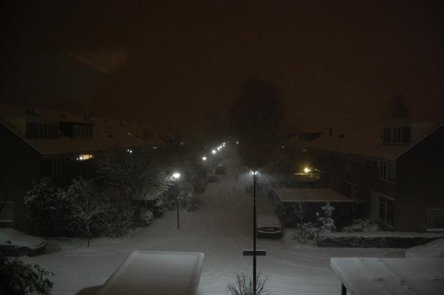 DSC 2436 Winter