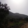 IMGP1995 - Spain 2008