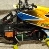 PC223509 - Protos