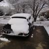DSC00271 - Dec 2010
