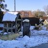 DSC09940 - Dec 2010