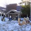 DSC09936 - Dec 2010