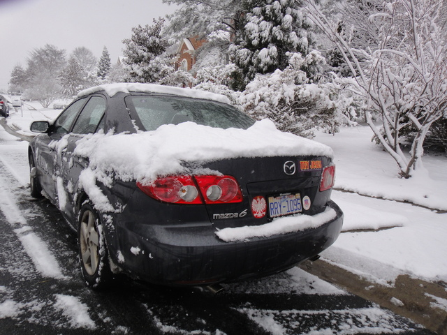 DSC00122 Dec 2010