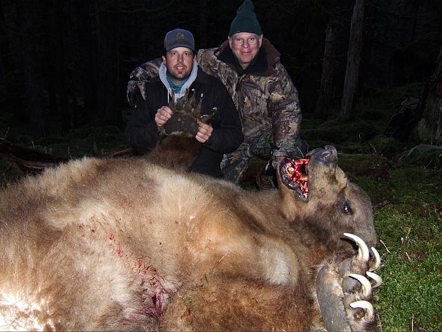 bear 2011 Apex