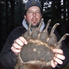 bear2 - 2011 Apex