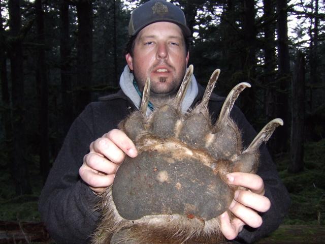 bear2 2011 Apex