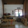 DSC01025 - jan 2011