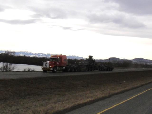 DSC01602 jan 2011