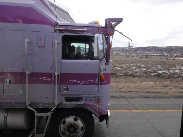 DSC01564 jan 2011
