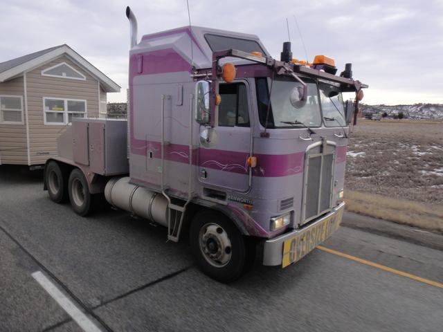 DSC01561 jan 2011