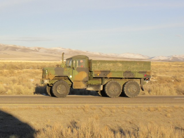DSC01914 Feb 2011