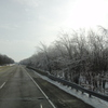 DSC02282 - Feb 2011