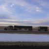 DSC03017 - Feb 2011