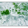 Ice Macro - Close-Up Photography