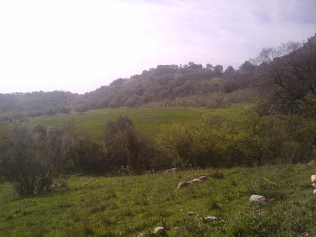 IMG 20110227 111202 Spanje 2011
