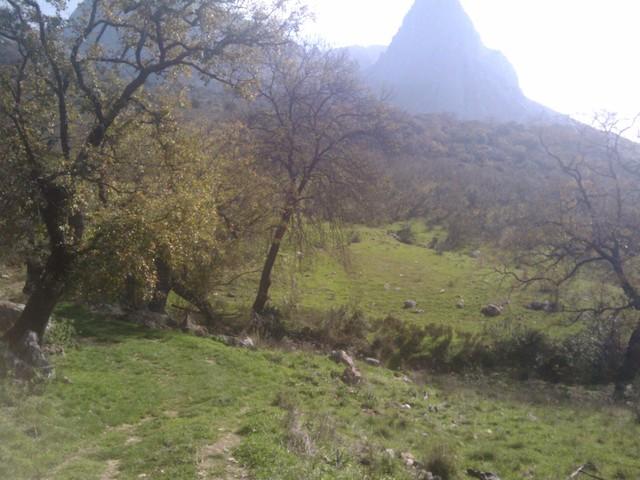IMG 20110227 111157 Spanje 2011