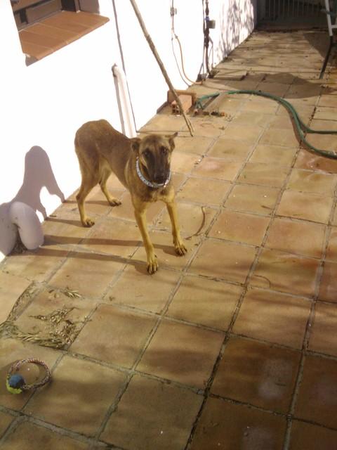IMG 20110224 095650 Spanje 2011