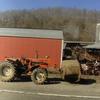 DSC04431 - March 2011