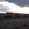 DSC05083 - March 2011
