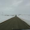 DSC05370 - March 2011