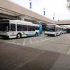 DSC05772 - March 2011